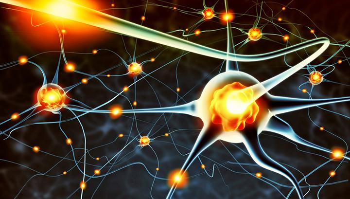 Active nerve cells