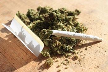 15-02-13-p8-cannabis